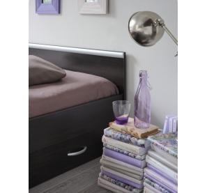 Lit tiroir pour adultes - Alpha - Café - l 146 x P 203 x h 59 cm