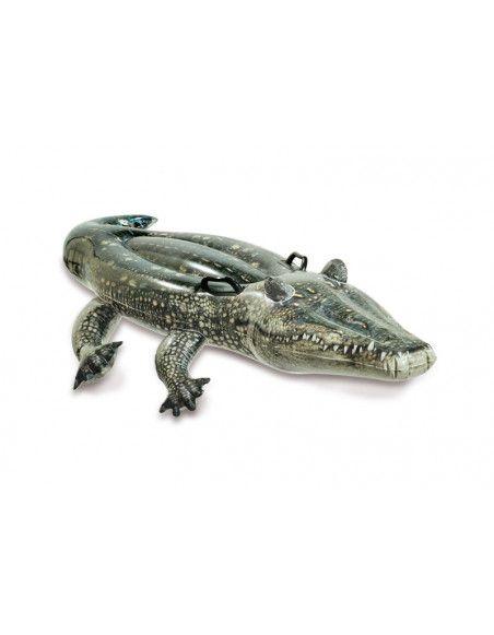 Alligator à chevaucher - 170 x 86 cm - Intex