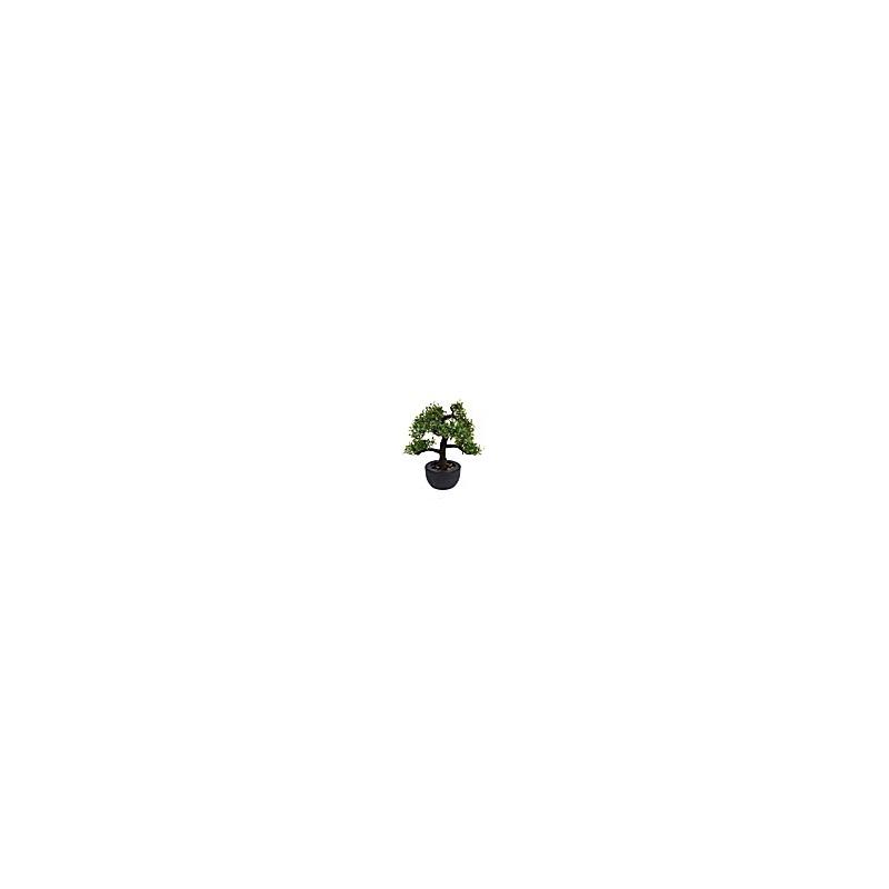 Arbre Bonsai - 31 cm - Modèle aléatoire