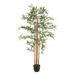 Bambou artificiel - H 180 cm