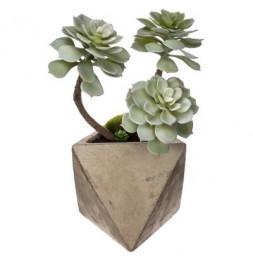 Plante artificielle - Pot en ciment - H 30 cm