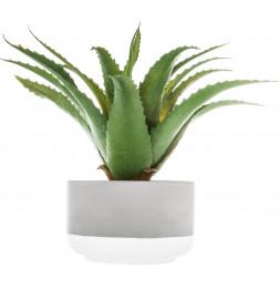Aloe Vera artificiel - D 12 x H 23 cm