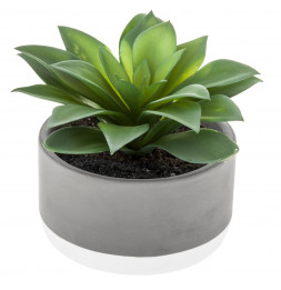 Plante grasse artificielle - D 12 x H 13 cm