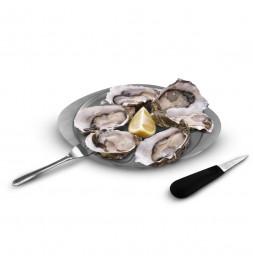 Coffret dégustation d'huîtres pour 6 personnes - 8 accessoires