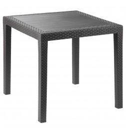 Petite table de jardin - Salon de jardin - 80 x 80 cm