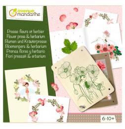 Boîte créative - Presse fleurs et herbier