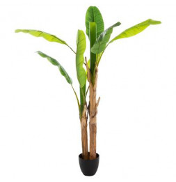 Bananier double - H 160 cm - Plante artificielle