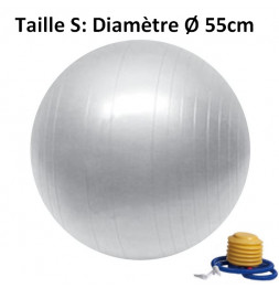 Ballon de Fitness - D 55 cm - Gris