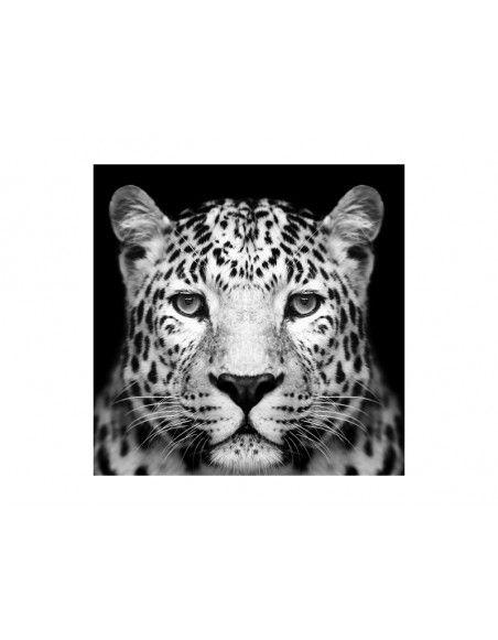 Tableau en verre - Panthere - 80 x 80 cm